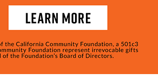 Learn More. The Hot Topic Foundation is a component fund of the California Community Foundation, a 501c3 public charity. Contributions to the California Community Foundation represent irrevocable gifts subject to the legal and fiduciary control of the Foundation's Board of Directors.